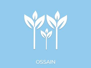 Pontos de Ossain